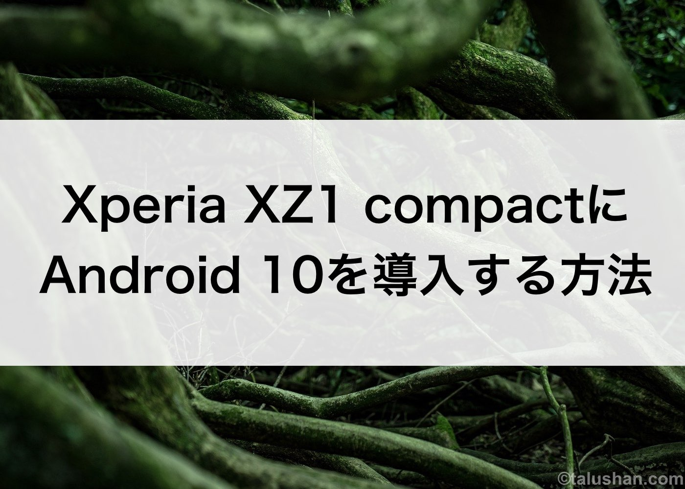 Xperia XZ1 compactにAndroid 10を導入する方法